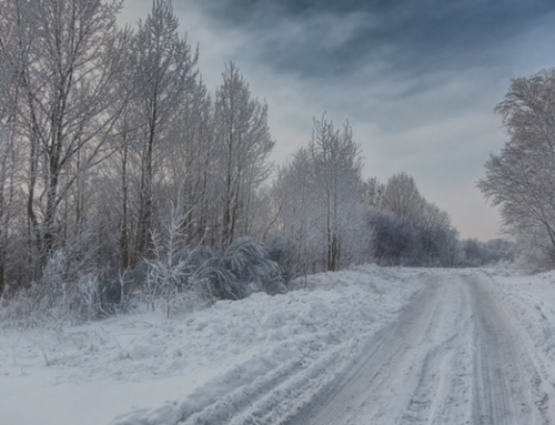 Stay Safe this Winter, Take Guidance from the Cold Weather Plan